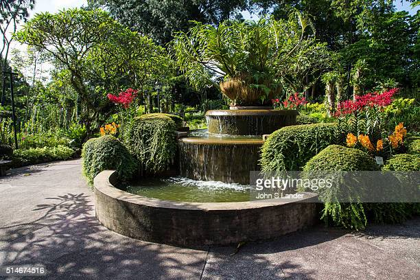 Tiger Orchid Fountain at National Orchid Garden Singapore has been a center for orchid breeding since the 1930s Some of the garden's hybrids have...