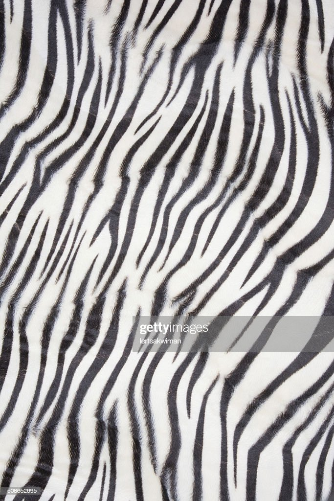 Tiger pattern background or texture : Stock Photo