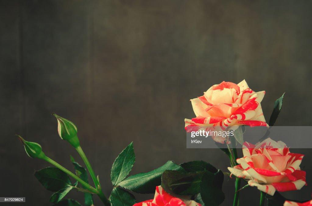 Blumen zum kopieren