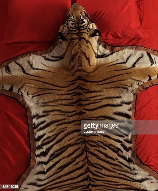 Pelle Di Tigre Foto E Immagini Stock