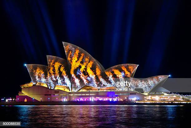 Tiger stripes are projected onto the sails of the Sydney Opera House as part of the Vivid Sydney 2014 festival.