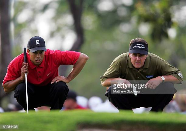 Tiger Woods and Phil Mickelson line up their putts on the 14th green during the final round of the Ford Championship at Doral on March 6 2005 held at...