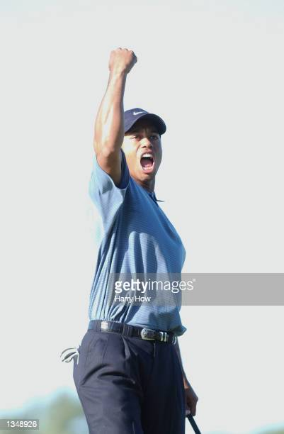 Tiger Woods celebrates holing out to save par on the 16th green during the third round on August 17 2002 for the PGA Championship at Hazeltine...