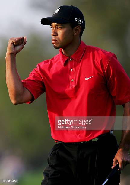 Tiger Woods celebrates sinking a birdie putt on the 17th hole during the final round of the Ford Championship at Doral on March 6 2005 held at the...