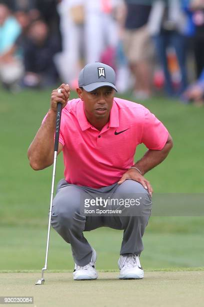 Tiger Woods checks his line on the 7th green during the third round of the Valspar Championship on March 10 at Westin Innisbrook-Copperhead Course in...