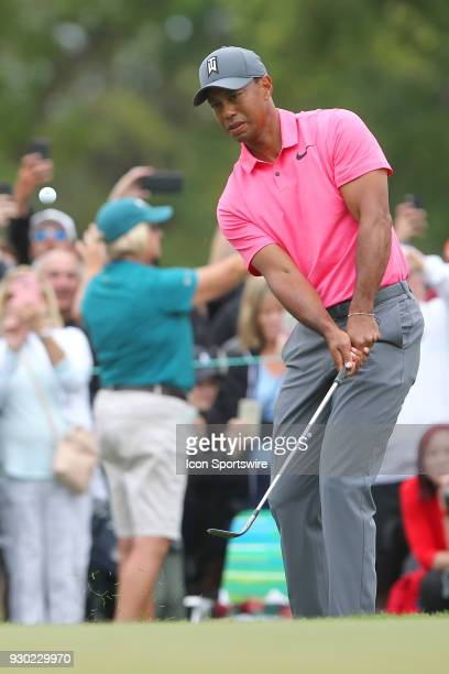 Tiger Woods chips onto the green during the third round of the Valspar Championship on March 10 at Westin Innisbrook-Copperhead Course in Palm...