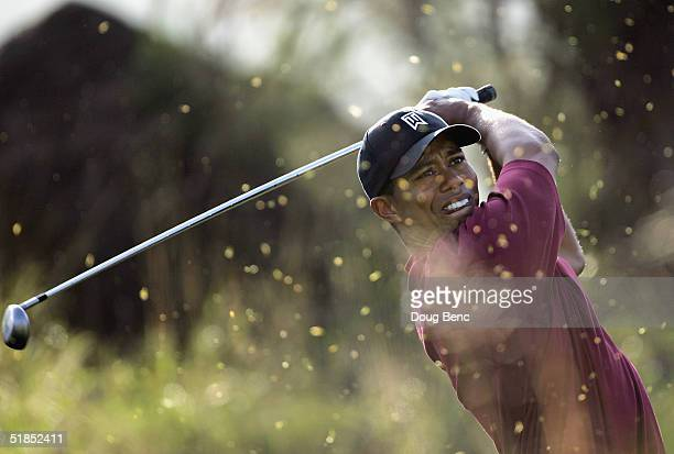 Tiger Woods hits his tee shot on the 13th hole during the final round of the Target World Challenge on December 12, 2004 at Sherwood Country Club in...