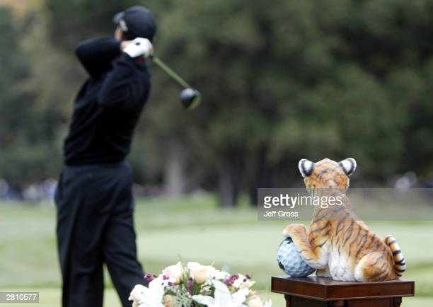 Tiger Woods hits his tee shot on the first tee during the final round of the Target World Challenge on December 14 2003 at the Sherwood Country Club...