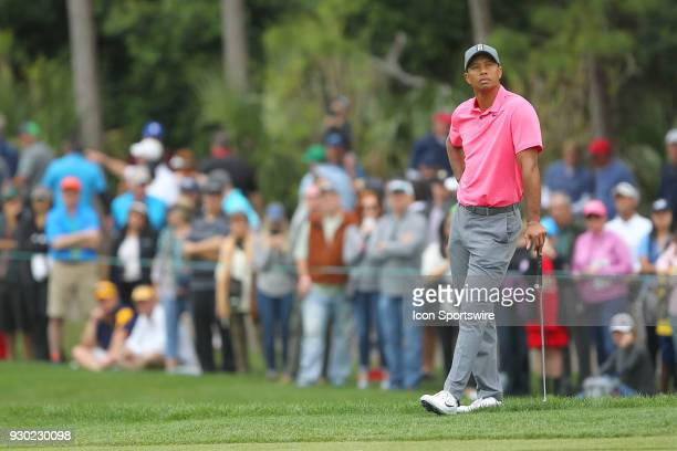 Tiger Woods looks into the sky after putting out on the 7th hole during the third round of the Valspar Championship on March 10 at Westin...