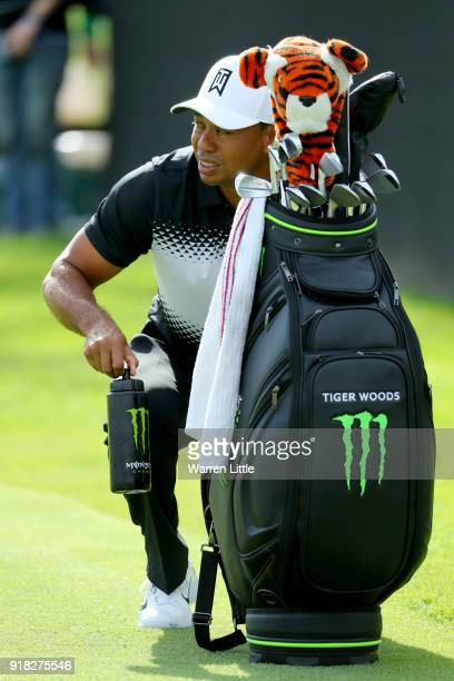 Tiger Woods looks on during the ProAm of the Genesis Open at the Riviera Country Club on February 14 2018 in Pacific Palisades California