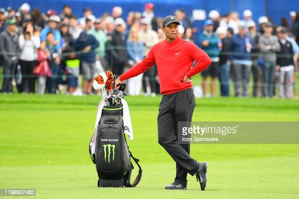 Tiger Woods looks on from the fairway of the 18th hole on the South Course during the final round of the Farmers Insurance Open golf tournament at...