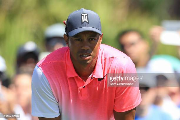 Tiger Woods looks onto the second green during the second round of the Honda Classic at PGA National Resort and Spa on February 23 2018 in Palm Beach...