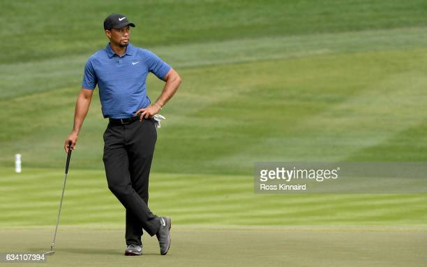 Tiger Woods o f the USA on the 9th green during the first round of the Omega Dubai Desert Classic at Emirates Golf Club on February 2 2017 in Dubai...