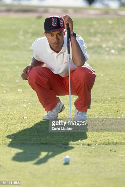 Tiger Woods of Stanford University poses for a portrait in October 1994 on the Stanford University Golf Course in Palo Alto California Woods was a...