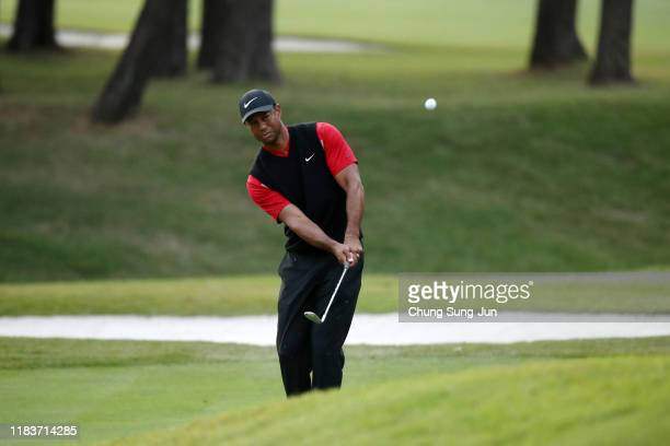 Tiger Woods of the United States chips onto the 11th green during the final round of the Zozo Championship at Accordia Golf Narashino Country Club on...