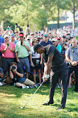 st louis mo tiger woods united
