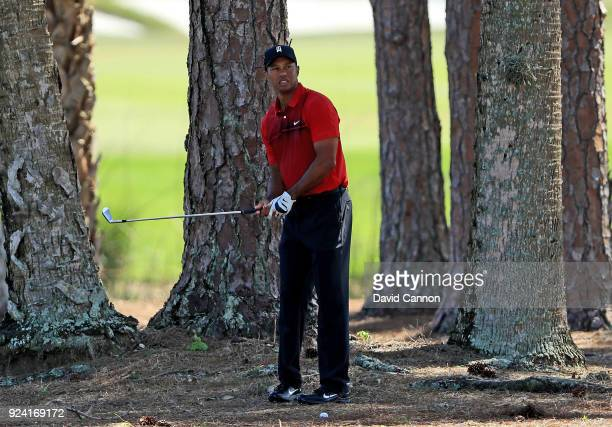 Tiger Woods of the United States plays his second shot from the pine straw on the par 4, second hole during the final round of the 2018 Honda Classic...