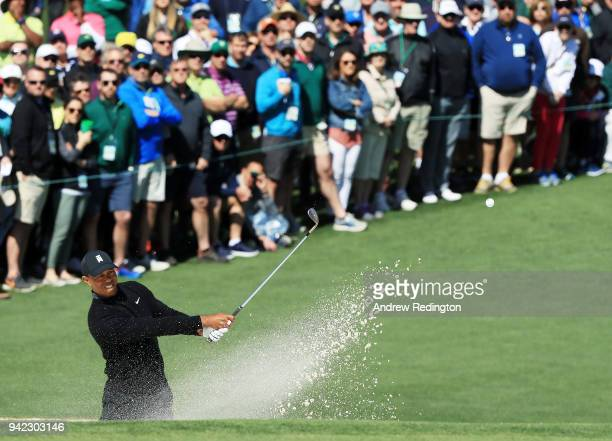 tiger woods stock photos and pictures