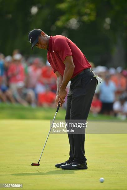 Tiger Woods of the United States putts on the 14th green during the final round of the 2018 PGA Championship at Bellerive Country Club on August 12...