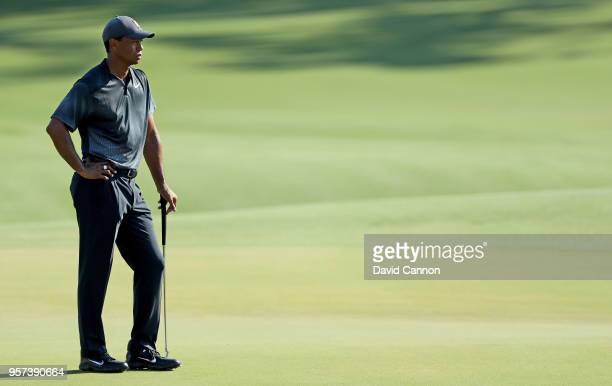 Tiger Woods of the United States waits on the green on the par 5 11th hole during the second round of the THE PLAYERS Championship on the Stadium...