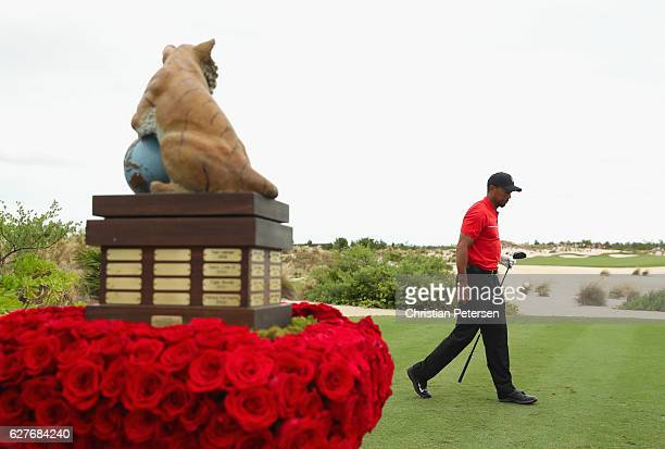 Tiger Woods of the United States walks off the first tee during the final round of the Hero World Challenge at Albany The Bahamas on December 4 2016...