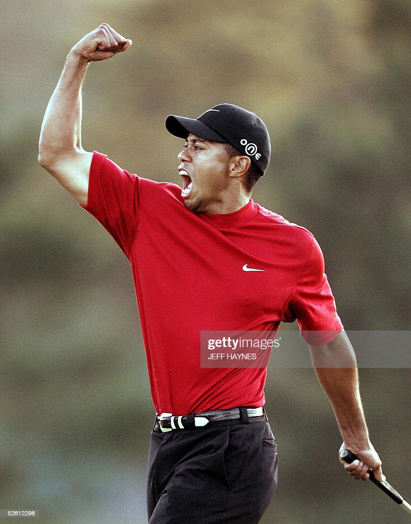 Tiger Woods of the US celebrates winning : News Photo