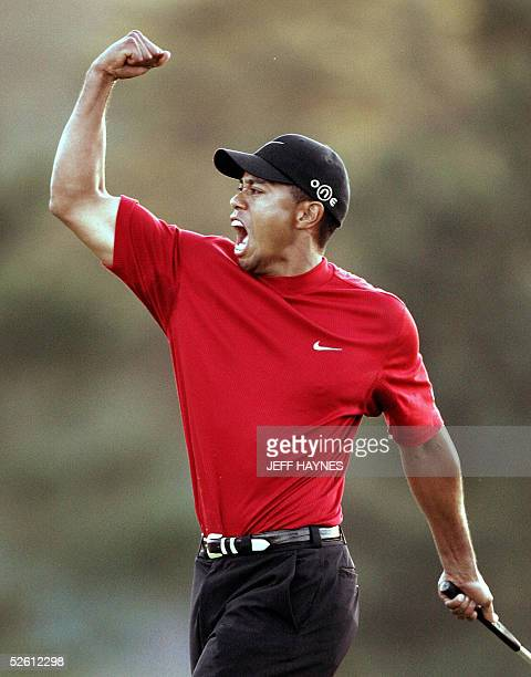 Tiger Woods Pictures And Photos