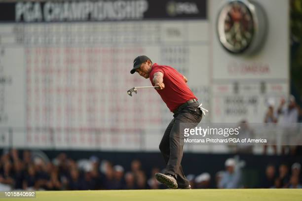 Tiger Woods of the US reacts to making his putt for birdie on the 18th hole during the final round of the 100th PGA Championship held at Bellerive...