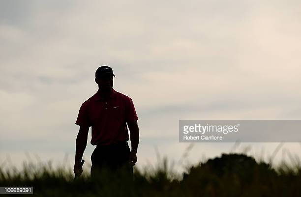 Tiger Woods of the USA lines up his shot on the green during day one of the Australian Masters at The Victoria Golf Club on November 11, 2010 in...