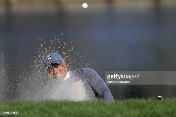 Tiger Woods plays a shot from a bunker on the 13th hole during the first round of the Valspar Championship at Innisbrook Resort Copperhead Course on...