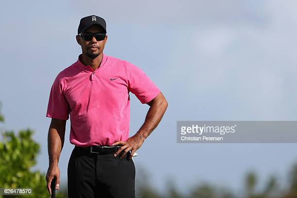 Tiger Woods practices on the putting green ahead of the Hero World Challenge at Albany The Bahamas on November 29 2016 in Nassau Bahamas
