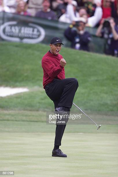 Tiger Woods pumps his fist on the 18th green after winning the 2001 Bay Hill Invitational at the Bay Hill Club and Lodge in Orlando Florida DIGITAL...