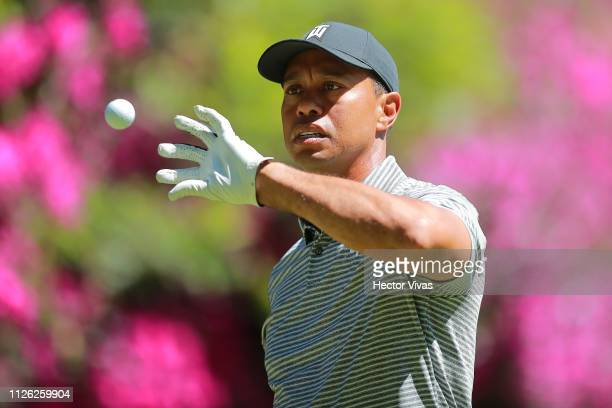 Tiger Woods receives a ball during the practice round of World Golf Championships-Mexico Championship at Club de Golf Chapultepec on February 20,...
