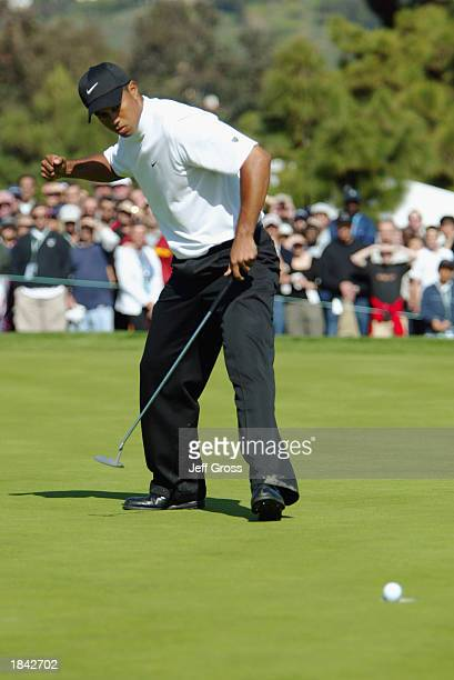 Tiger Woods sinks a birdie putt on the 9th hole during his semifinal match against Adam Scott of Australia at the Accenture Match Play Championship...