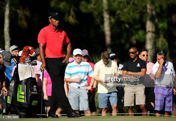 Tiger Woods stands on the third green during the final round of THE PLAYERS Championship at the TPC Sawgrass Stadium course on May 10 2015 in Ponte...