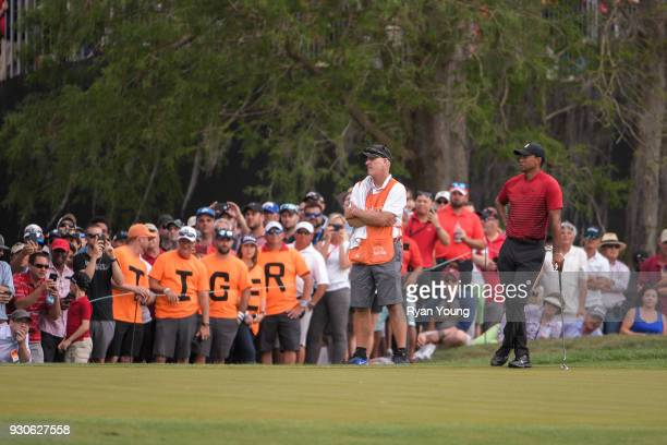 Tiger Woods waits to putt in front of fans wearing shirts that spell out 'TIGER' during the final round of the Valspar Championship at Innisbrook...
