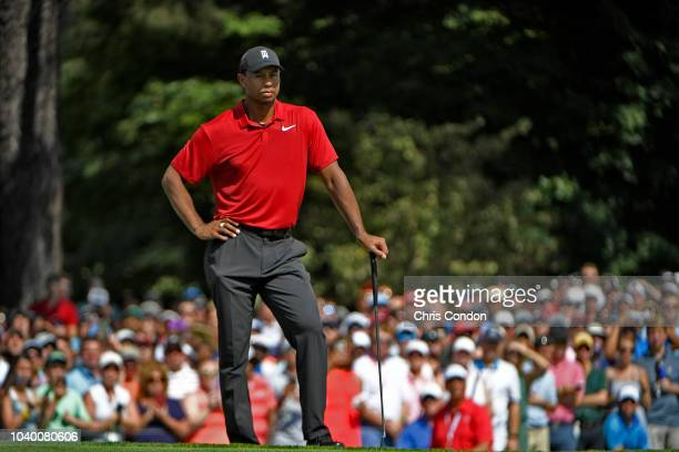 Tiger Woods waits to putt on the fifth green during the final round of the TOUR Championship at East Lake Golf Club on September 23 in Atlanta Georgia