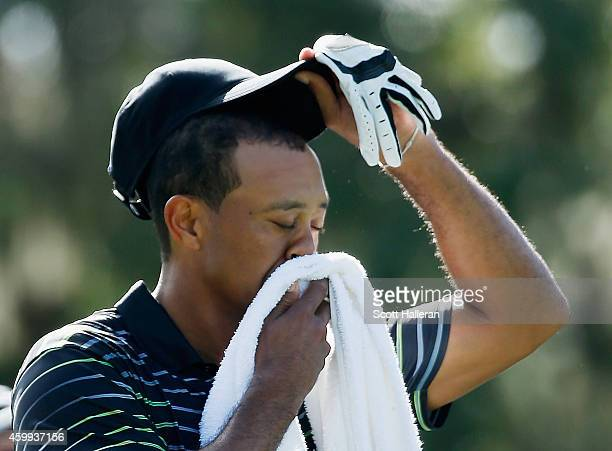 Tiger Woods wipes his face on the third tee during the first round the Hero World Challenge at the Isleworth Golf Country Club on December 4 2014 in...