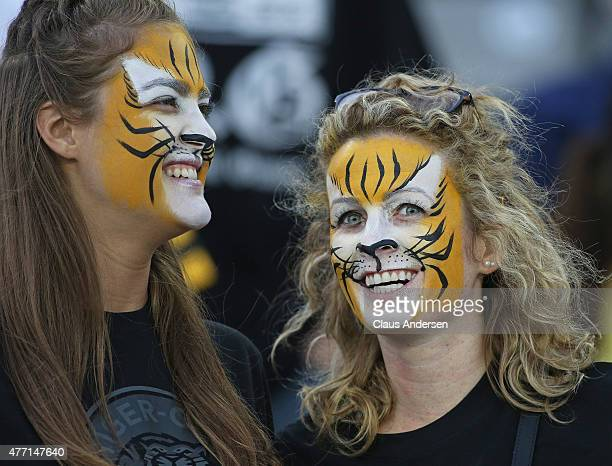TigerCats fans get into the spirit prior to play between the Ottawa Redblacks and the Hamilton TigerCats during a preseason CFL football game at Tim...