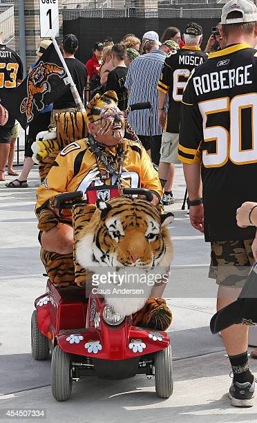 Tiger-cats fans get into the spirit prior to play between the Toronto Argonauts and the Hamilton Tiger-cats in a CFL football game at Tim Hortons...