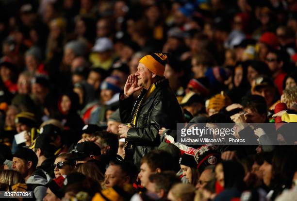 Tigers fan cheers during the 2017 AFL round 23 match between the Richmond Tigers and the St Kilda Saints at the Melbourne Cricket Ground on August 27...