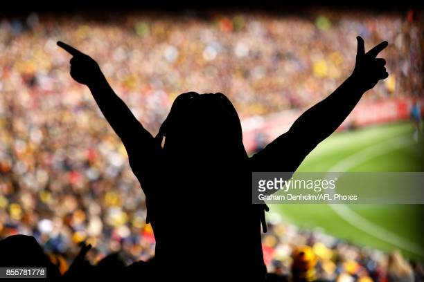 Tigers fan shows his support during the 2017 AFL Grand Final match between the Adelaide Crows and the Richmond Tigers at Melbourne Cricket Ground on...