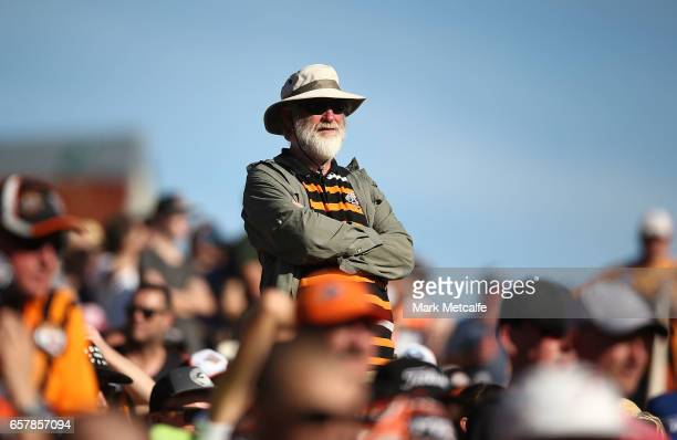 Tigers fan watches the round four NRL match between the Wests Tigers and the Melbourne Storm at Leichhardt Oval on March 26 2017 in Sydney Australia