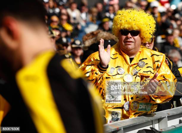 Tigers fans cheer as the players leave the field after the warmup during the 2017 AFL round 21 match between the Geelong Cats and the Richmond Tigers...