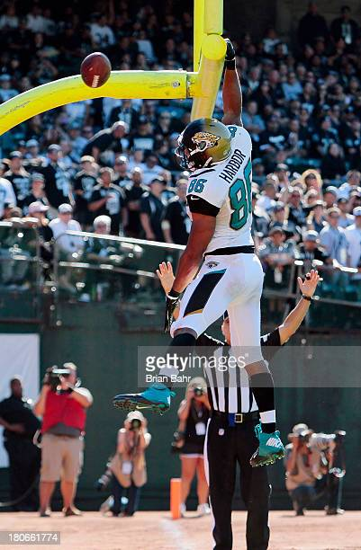 Tight end Clay Harbor of the Jacksonville Jaguars celebrates a touchdown against the Oakland Raiders in the fourth quarter on September 15 2013 at...