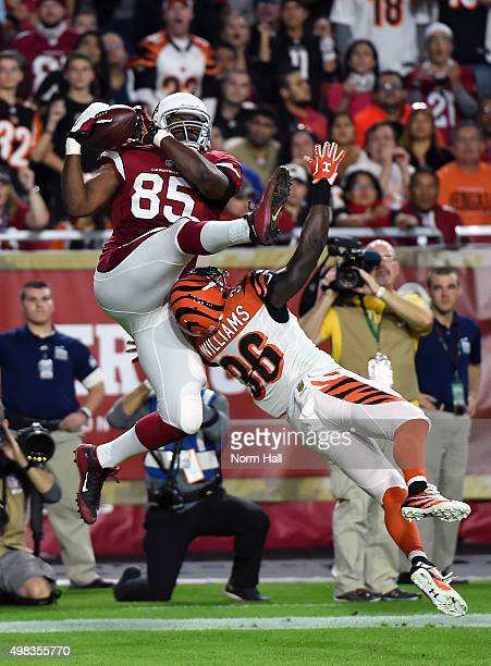 Tight end Darren Fells of the Arizona Cardinals hauls in a second quarter touchdown pass over safety Shawn Williams of the Cincinnati Bengals during...