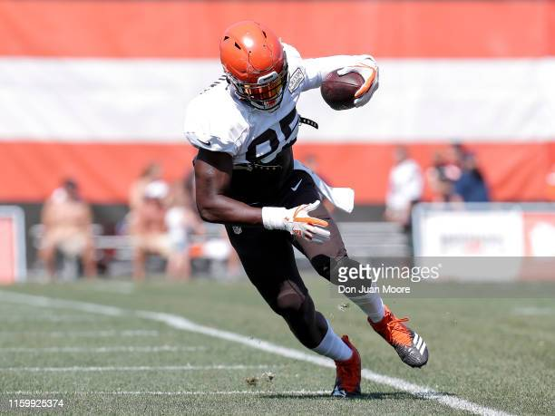 Tight End David Njoku make a catch near the sidelines during the Cleveland Browns Training Camp on August 5 2019 at the Cleveland Browns Training...