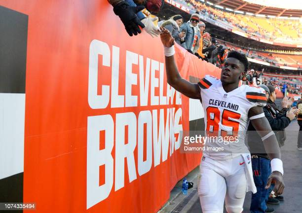 Tight end David Njoku of the Cleveland Browns highfives fans as he walks off the field after a game against the Carolina Panthers on December 9 2018...