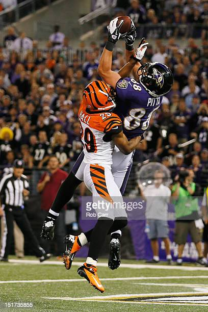 Tight end Dennis Pitta of the Baltimore Ravens catches a touchdown pass in front of cornerback Leon Hall of the Cincinnati Bengals during the second...