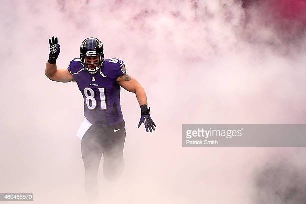 Tight end Owen Daniels of the Baltimore Ravens is introduced before playing the Jacksonville Jaguars at MT Bank Stadium on December 14 2014 in...